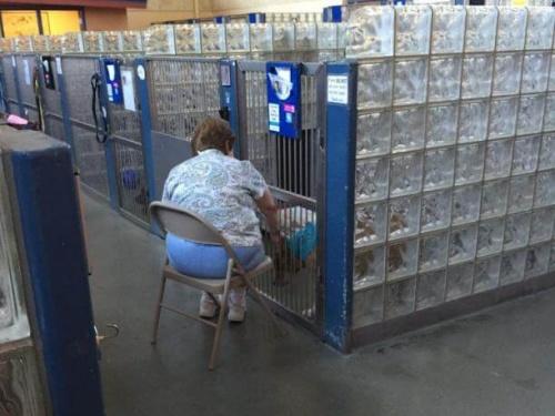 Eine Frau liest Hunden im Tierheim vor, damit sie sich weniger einsam fühlen