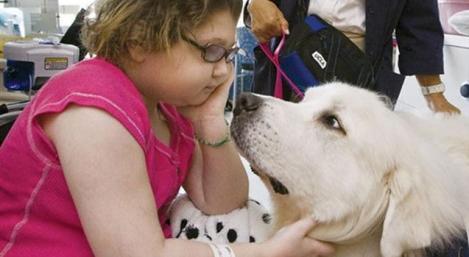 Tierbesuche bei kranken Kindern