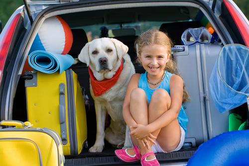 Kind mit Hund im Aute, beiden brauchen Sicherheitsgurt