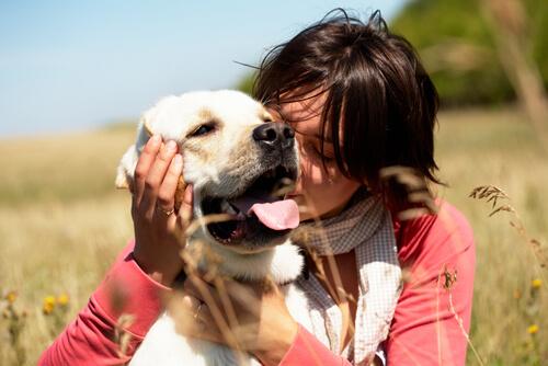 Hunde umarmen wie diese Frau ist keine gute Idee