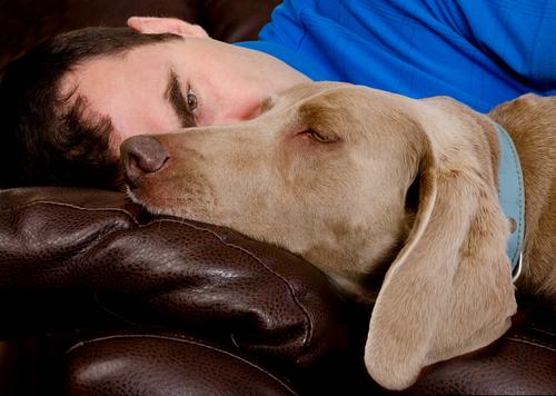 Schlafpositionen auf der Couch