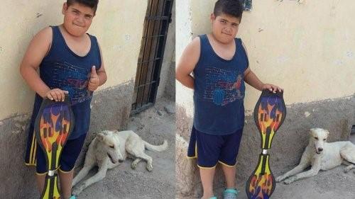 Junge verkauft Skateboard, um Straßenhund zu pflegen