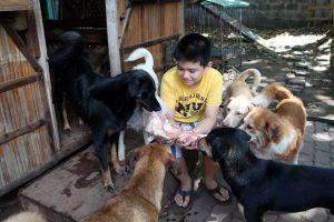 Ken mit glücklichen Hunden