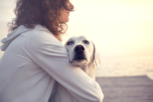 Ein Haustier macht dich 10 Jahre jünger