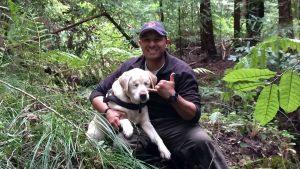Labrador wurde im Wald gefunden