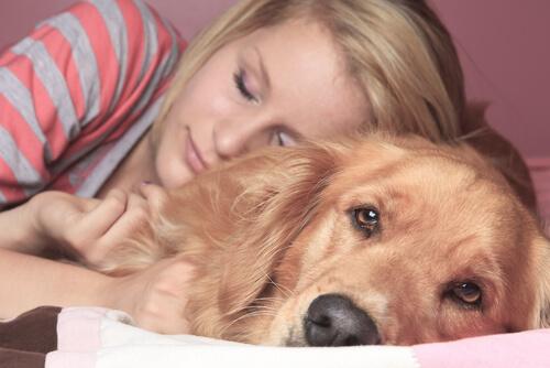 Darf das Haustier ins Bett? Vor- und Nachteile
