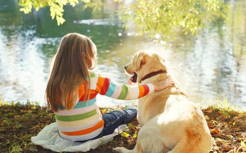 Tipps, um einen Hund zu sozialisieren