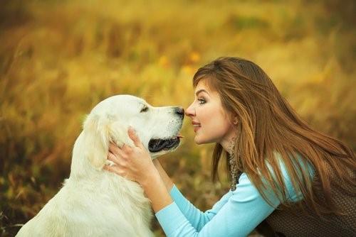 Dinge die dein Hund nicht mag - Frau schaut Hund in die Augen