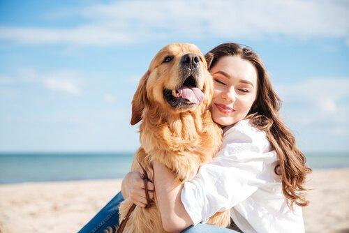 Abhängigkeit von Hund und Frau