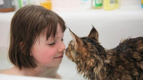 Autistisches Mädchen und Katze: wunderbare Beziehung!