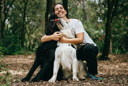 Dein Hund kennt dich besser als alle anderen