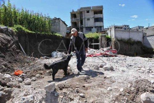 Hund und Besitzer bei Erdbeben