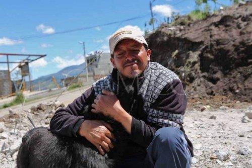 Mann und Hund nach Erdbeben