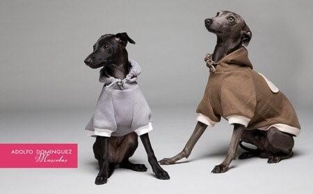 Adolfo Dominguez und seine Kollektion für Hunde