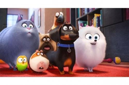 """""""Das geheime Leben der Haustiere"""", ein sehenswerter Film"""