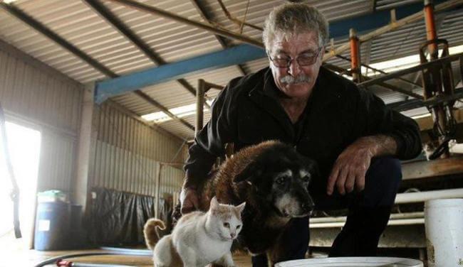Der älteste Hund der Welt mit seiner Familie