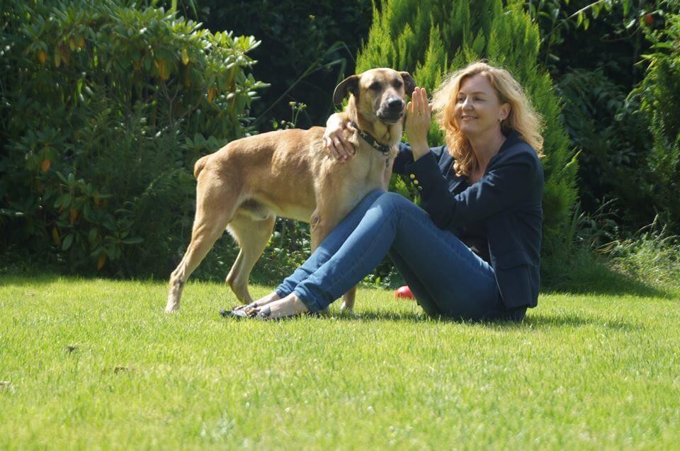 Die Stewardess und der Straβenhund - Rubio in Friesland