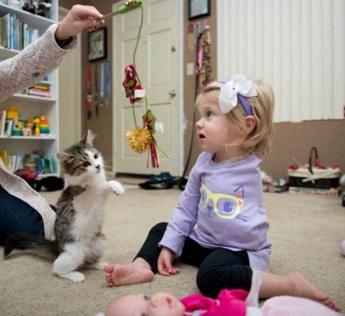 Dreibeiniges Kätzchen wird von Mädchen mit amputiertem Arm adoptiert