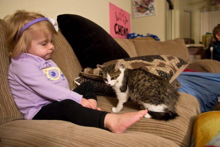 kleines Mädchen und dreibeiniges Kätzchen sind beste Freunde