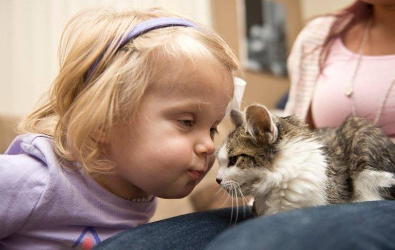 Freunde fürs Leben ein Mädchen und dreibeiniges Kätzchen