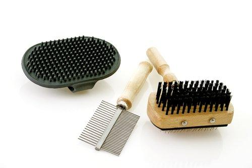 Haare deines Hundes aus der Kleidung entfernen mit Bürsten