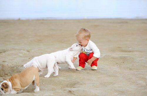 Baby und Hund beim Spiel