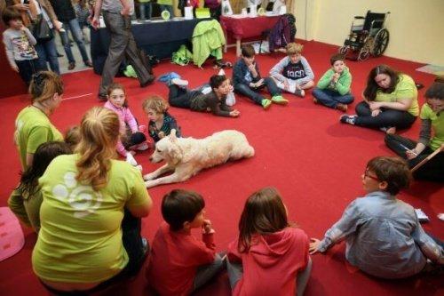 Signalhund für Kinder
