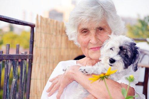 ältere Frau macht Hundetherapie