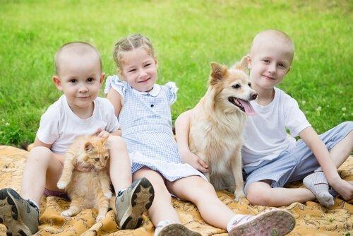 Haustiere sind gut für Kinder