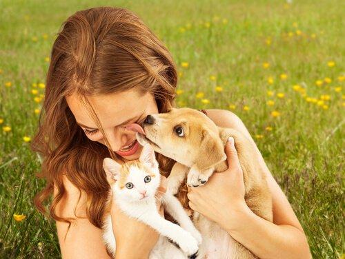 5 Gründe, warum es ein Haustier gut für die seelische Gesundheit ist