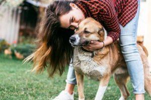 Hund fühlt sich glücklich mit Frauchen