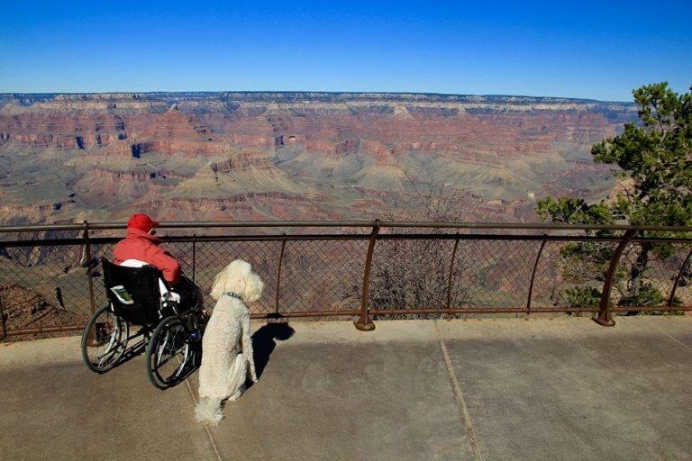 Frau und Hund unterwegs