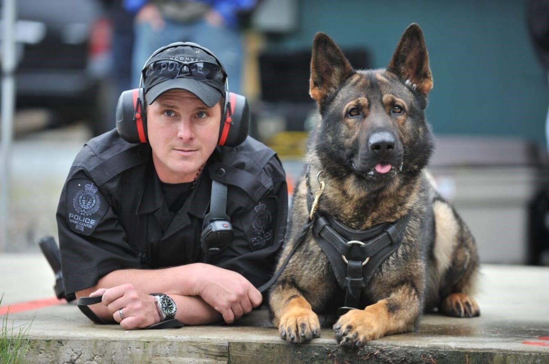 Ein Polizeihund geht in Ruhestand - Hund und Partner
