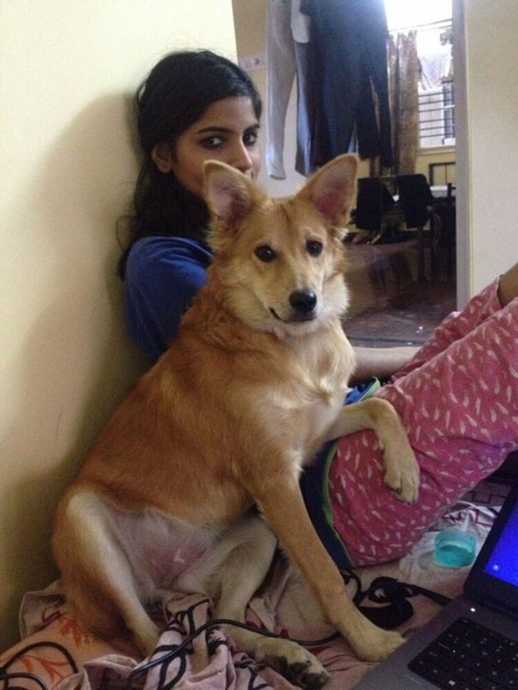 Sie musste einen Heiratsantrag ablehnen um ihren Hund nicht zu verlieren - Karishma und Lucy