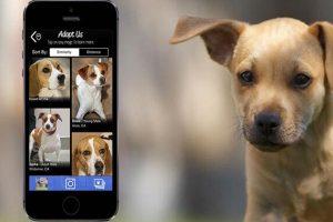Apps für die Hundeadoption