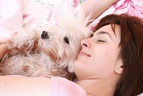 Besser schlafen mit dem vierpfotigen Freund im Bett