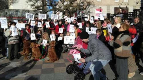 Große Demos für bessere Tierschutzgesetze
