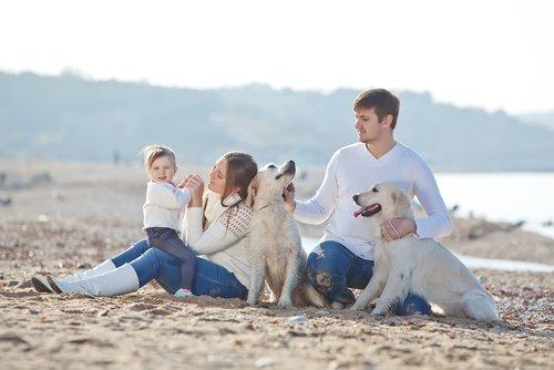 Familie mit Hunden, die freundlicher werden müssen
