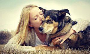 Frau will Hund glücklich machen