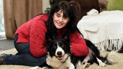 Hunde sind der Schlüssel zur Rettung von Krebspatienten