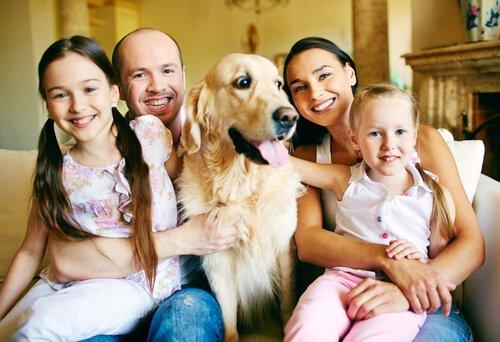 Zusammenleben mit Familie und Hund