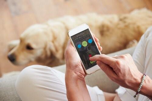 Die besten Geschenke für Hundeliebhaber - Hund und Smartphone