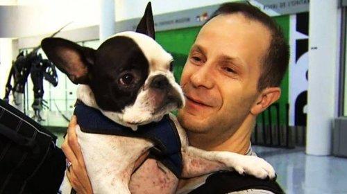 Flugzeugpilot rettet Hundeleben