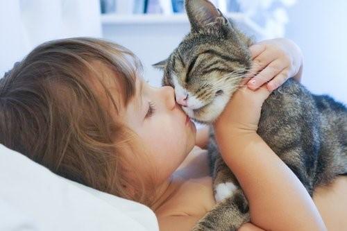 Wie Katzen unser Leben verändern - Kleines Mädchen mit Katze