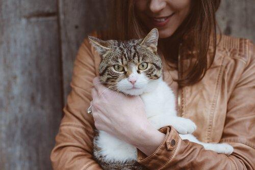 Frau mit Katze ist über übertragbare Krankheiten informiert