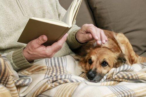 Großvater liest auch mal dem Hund eine Geschichte vor