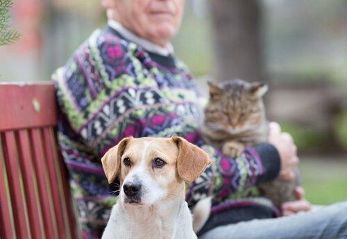 Hund und Katze beim Großvater