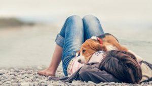 Stress vermeiden um gegen Krebs bei Hunden vorzubeugen - Frau mit Hund am Strand