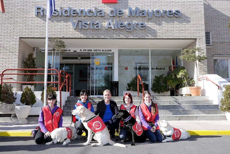 Therapiehunde im Alternsheim