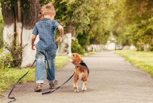kinderfreundliche Hunderassen